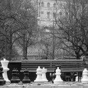 Image: Chess